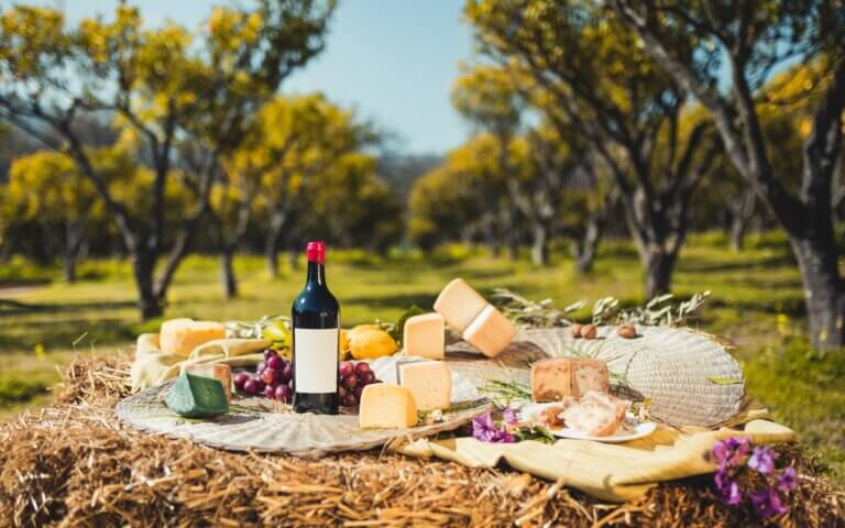 Composition of cheeses in nature with bottle of red wine